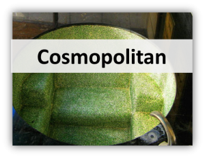 cosmopolitan 300x232 Interior Designs