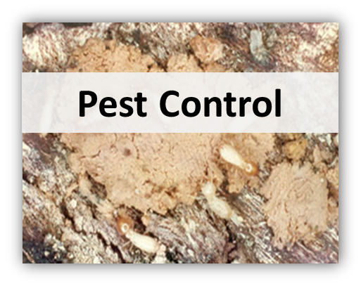 pest control Home Services