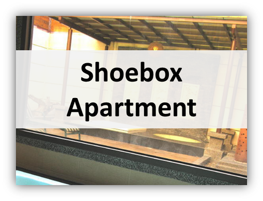 Shoebox Apartment Interior Designs