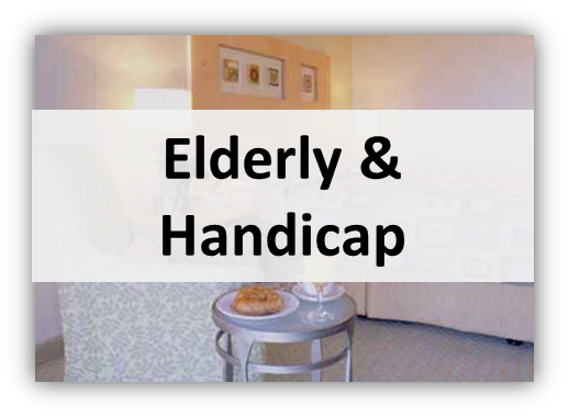 elderly and handicap Lights, Furniture & Deco