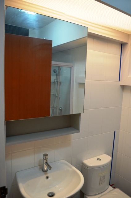Amazing Masterbed Room Toilet, Space Saving Mirror Cabinet For Toiletries And  Personal Care (Closed) Part 3